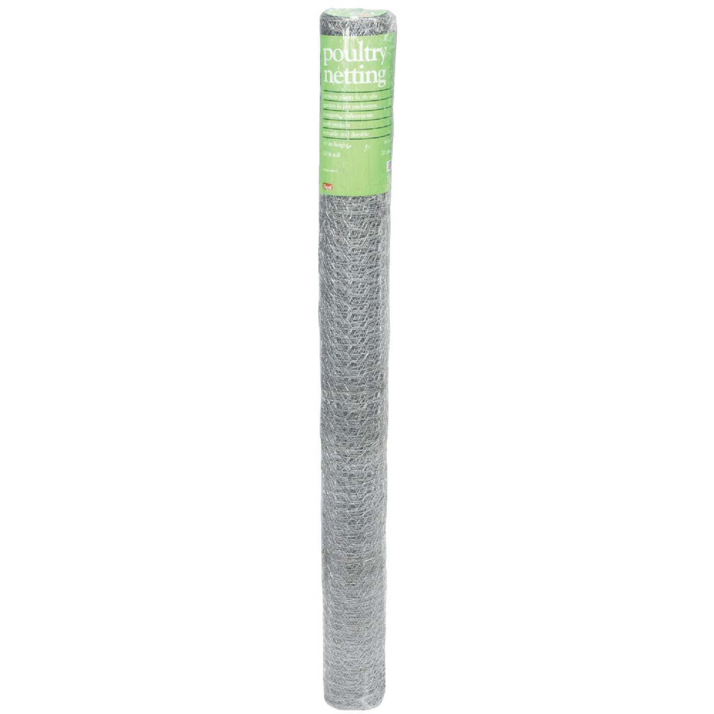 Do it 1 In. x 48 In. H. x 50 Ft. L. Hexagonal Wire Poultry Netting Image 2